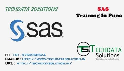 SAS is the Next Big Thing in Professional Courses