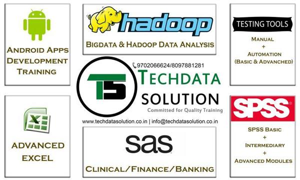 Training Scope for SAS and Big Data Applications.