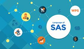 Top Reasons to Learn SAS